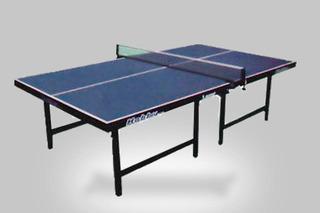 Mesa De Ping Pong 2,74 X 1,52 M