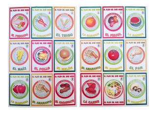 Lotería Didáctica Educativa Plato Del Buen Comer Primaria