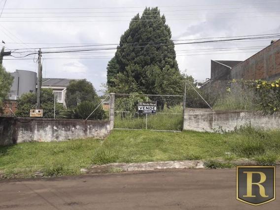 Terreno Para Venda Em Guarapuava, Bairro Dos Estados - _2-869288