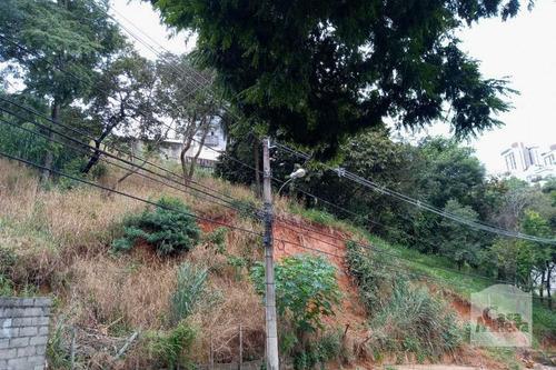 Imagem 1 de 4 de Lote À Venda No Ouro Preto - Código 274205 - 274205
