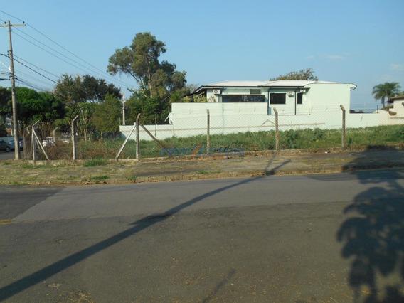 Terreno À Venda Em Nova Campinas - Te272714