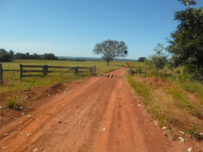 Fazenda Em Goiatins - To Aptidão 1.500 Hectares Agricultura - 408
