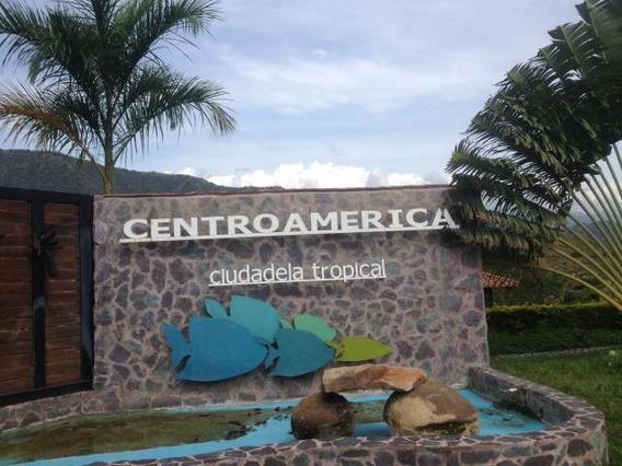 Lote 6000 Mts Ciudadela Centroamérica