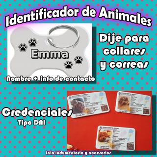 Dije + Dni Para Mascotas Personalizados