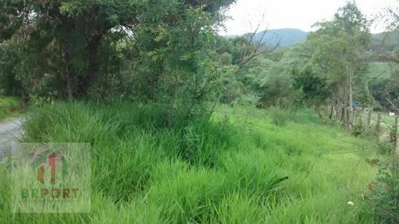 Lindo Terreno Na Lagoa - Te0054