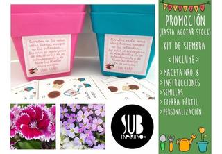 20 Original Souvenir Kit De Siembra Jardineria Maceta Nro 8