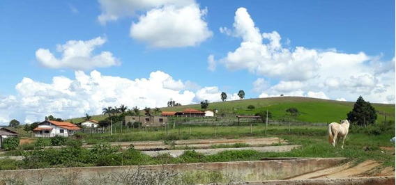Fazenda No Sul De Minas Com 217 Hectares , Cidade De Serranos, Casa Sede , 02 Chalés, Piscina , Sauna, Toda Formada. - 476