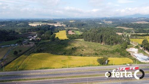 Terreno - Campo Largo Da Roseira - Ref: 701 - V-701