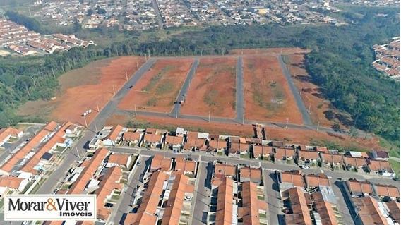 Terreno Para Venda Em Fazenda Rio Grande, Santa Terezinha - Faz5577