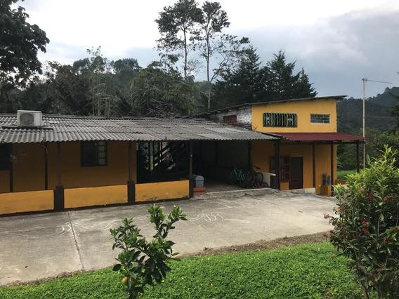 Venta Eco Hostal, Salento Quindio