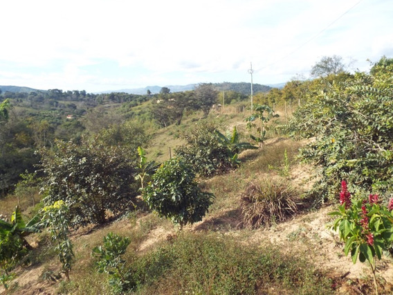 Chácara Com 1 Quartos Para Comprar No Zona Rural Em Taquaraçu De Minas/mg - 2274