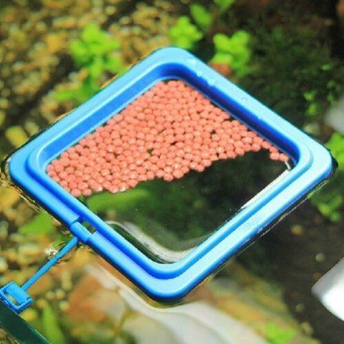 Comedouro Para Peixes Quadrado Medidas 10x10 Cm(alimentador)