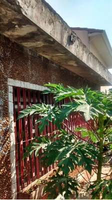 Terreno Residencial À Venda, Vila São Pedro, São Paulo. - Te0051