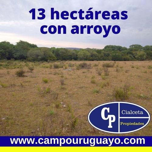 Campo De 13 Hectáreas Con Arroyo