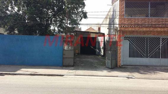 Terreno Em Vila Dionisia - São Paulo, Sp - 321443