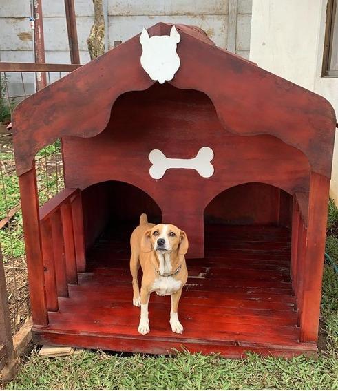 Casa De Perro Para Jardín