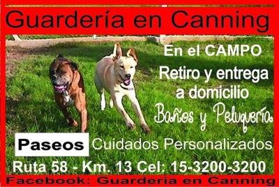 Guardería En Canning En El Campo Con Pileta Pensión Canina