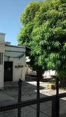 Casa En Venta En Tampico Col. Altavista Calle Palmas