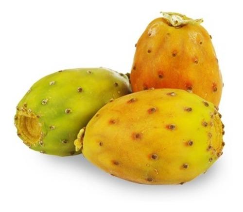 2 Figo Amarelo + 2 Figo Vermelho +1 Ora Pro Nobis+1 Palminha