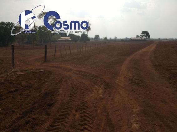 Fazenda, A Venda, Em Araguacema - To - Fa00074 - 33571607
