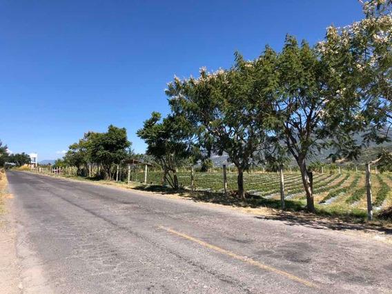 Terreno Carretera Tenancingo - Zumpahuacan Km 15