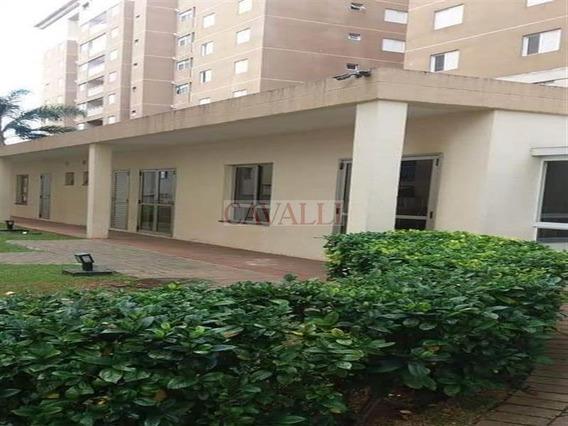 Lindo Apartamento - 4508
