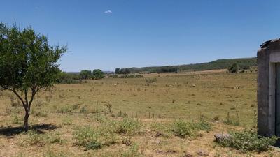Campo En Venta En Aiguá