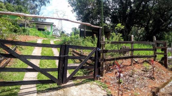 Sítio Rural À Venda Limeira Pouso Alegre. - Si0002