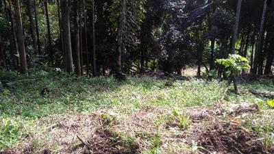 Terreno De Chácara Em Condomínio, Em Itariri,ref 4314