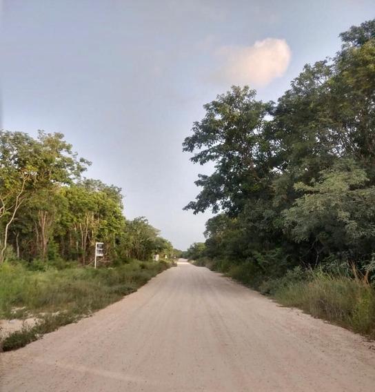 Venta De Terreno Entre Tulum Y Playa Del Carmen, Quintana Ro