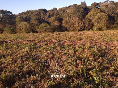 Imagem 1 de 12 de Terreno À Venda Com 20000m² Por R$ 490.000,00 - Mandirituba / Pr - Te0252