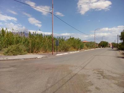 Terrenos En Venta Fiambala Centro 10x40 Mts.