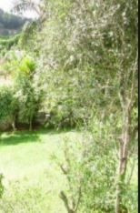 Imagem 1 de 3 de Terreno À Venda, 1000 M² Por R$ 399.000,00 - Jardim Sol Nascente (ouro Fino Paulista) - Ribeirão Pires/sp - Te0077
