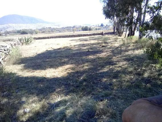 Terreno Campestre, San Pedro, Huimilpan