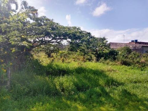 Terreno Em Itanhaém 250m². 6418e
