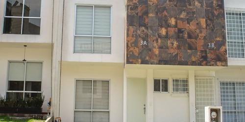 Imagen 1 de 17 de Palma Areca, Las Canteras