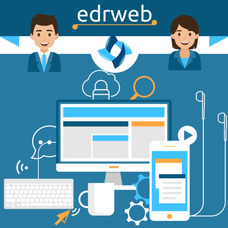 Programador Web Wordpress - Diseñador Web - Paginas Web