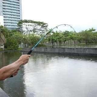 Vara De Pesca 1,20 Cm Para Carretilha Monilete