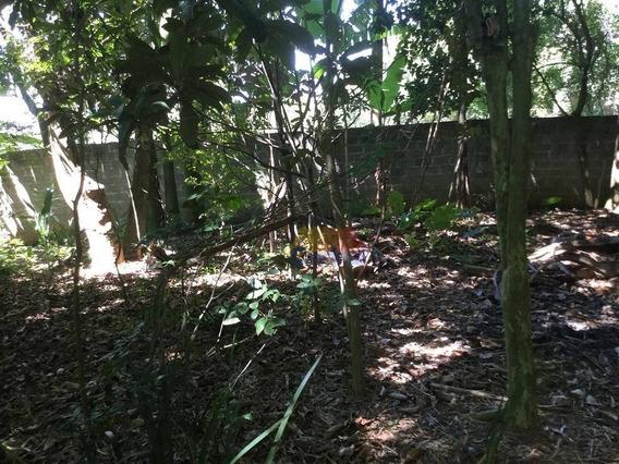 Terreno Residencial À Venda, Vila Ruth, Poá. - Te0194