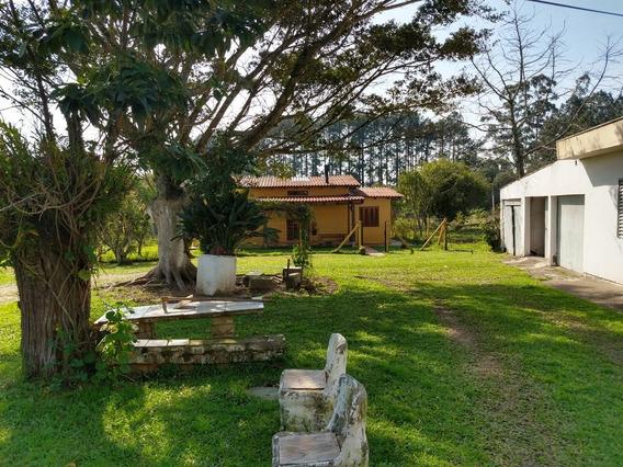 Terreno Em Lomba Do Pinheiro - Lu429476