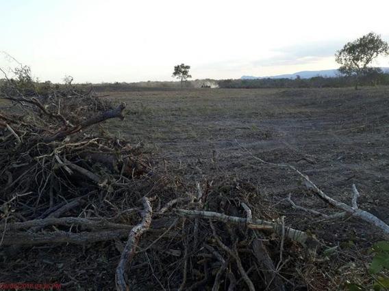 Fazenda Para Venda Em Poconé, Zona Rural - 862301