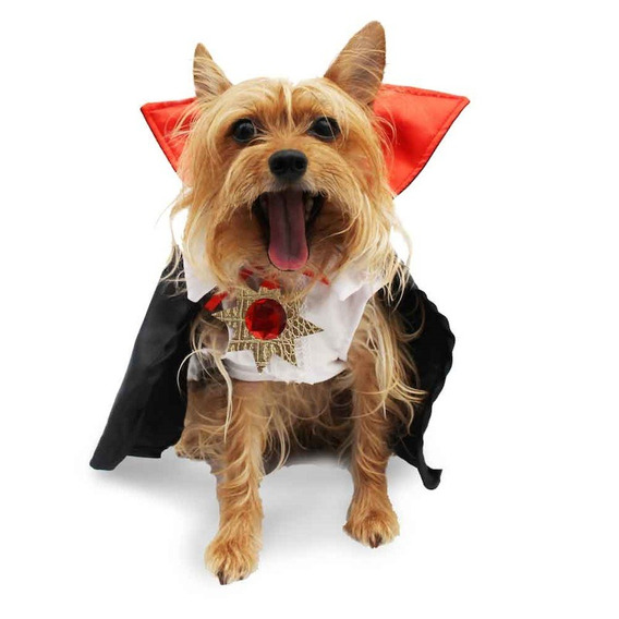 Disfraz Vamperry Perro Halloween Talla 7 Mascota Pet Pals