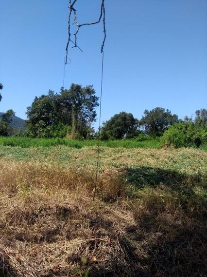 Terreno Em Mongaguá