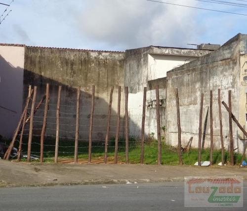 Terreno Para Venda Em Peruíbe, Jardim Icaraiba - 0038_2-175782