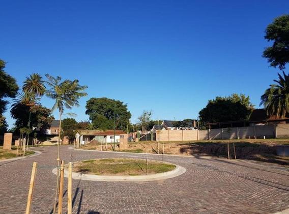 Terreno - Punta Chica