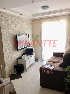 Apartamento Em Cachoeirinha - São Paulo, Sp - 308100