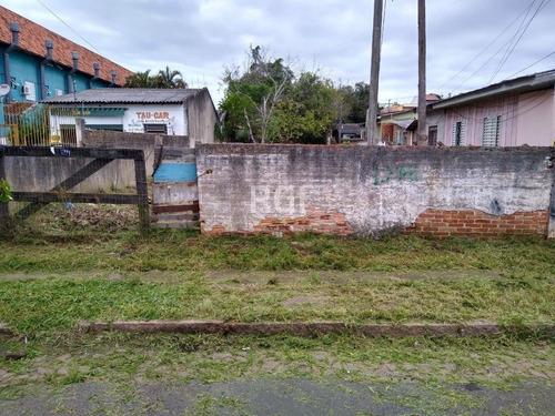 Terreno Em Tristeza - Li50877848