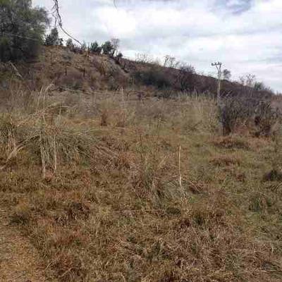 Terreno Rustico Venta San Bortolo Morelos
