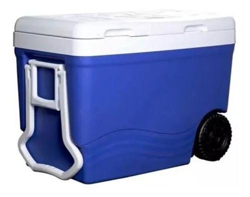Cava Decocar Ice Roller Standar 55 L