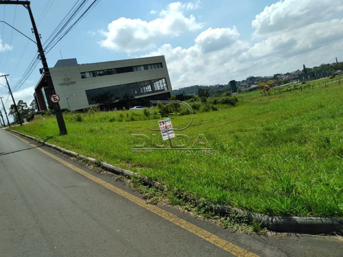 Terreno - Sao Cristovao - Ref: 33126 - V-33123